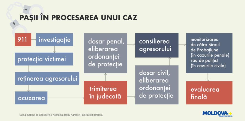 Pasii in procesarea unui caz
